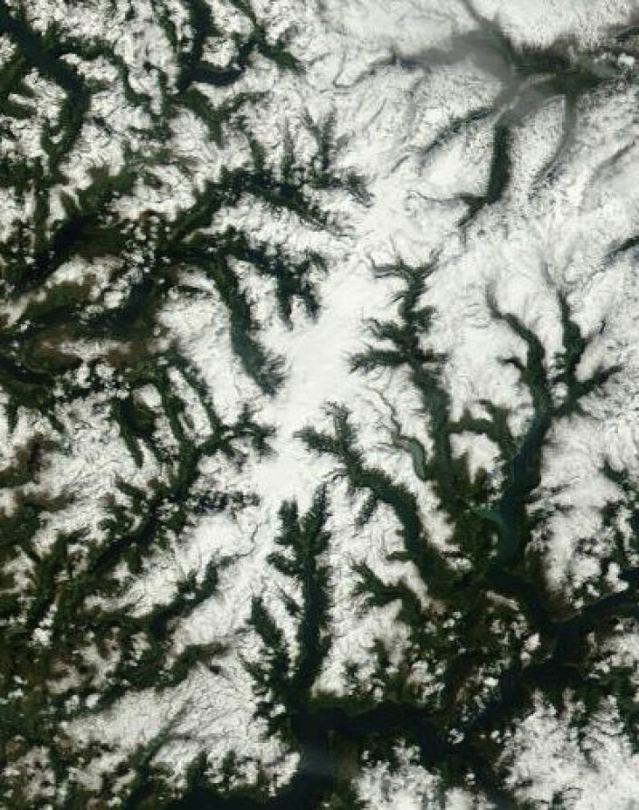 Vi begynner å skimte selve Jostedalsbreen nå, etter hvert som snøen smelter i terrenget rundt omkring. Dette bildet er tatt 27. juni. (Foto: (NASA Terra MODIS))