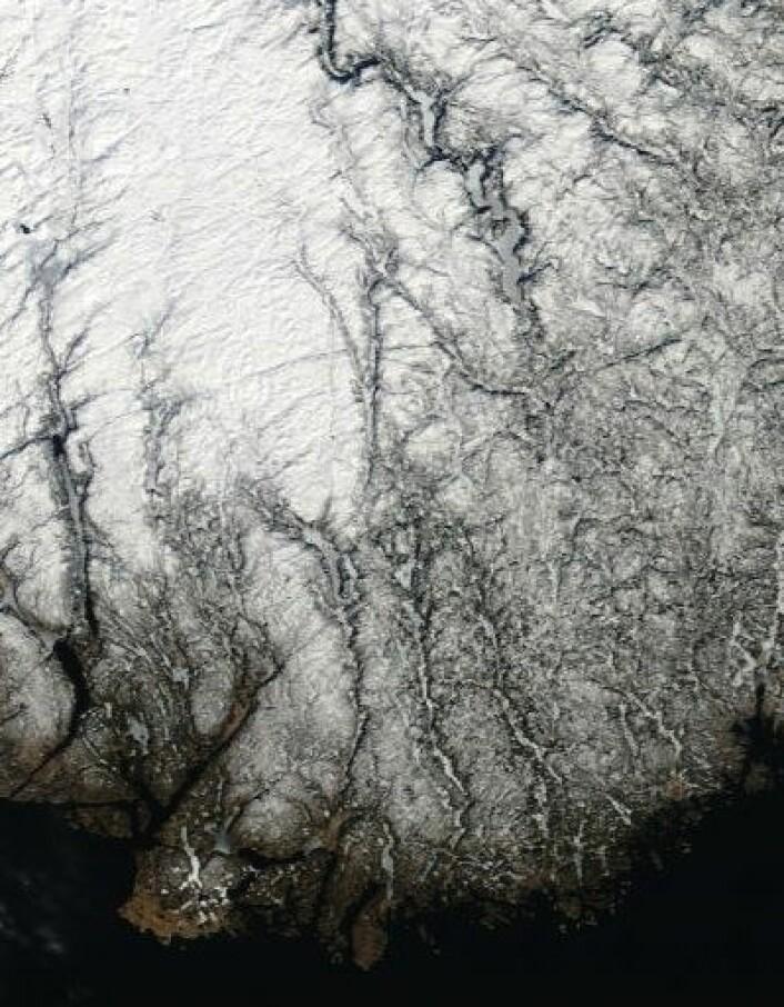 Sørlandet sett fra NASAs satellitt Terra torsdag 14. mars. (Foto: (NASA Terra MODIS))