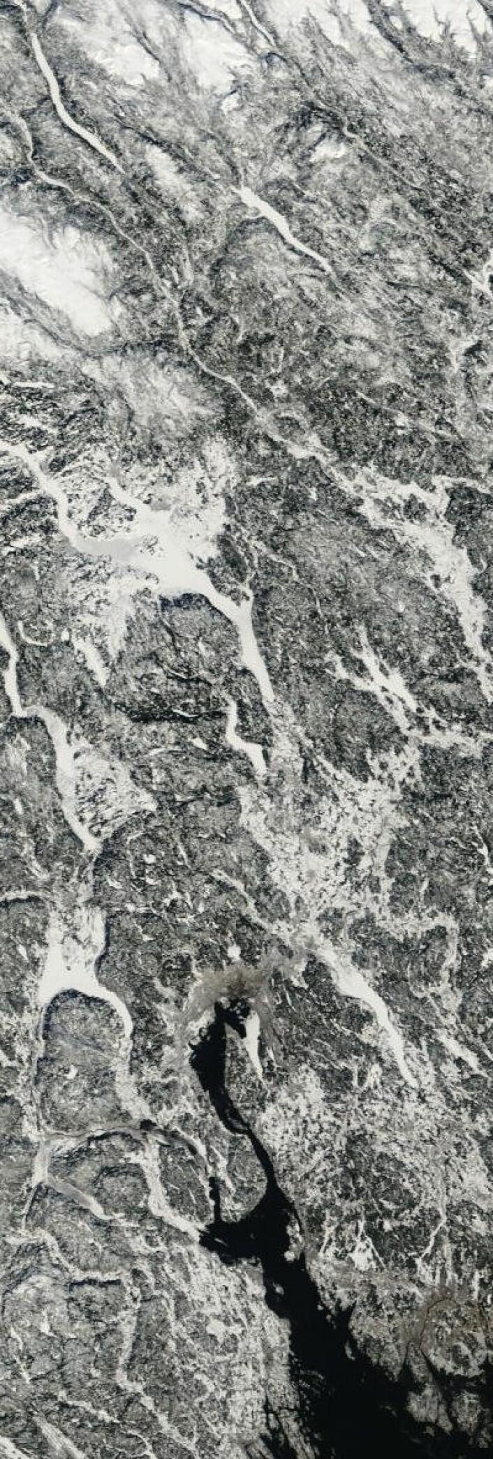 Kaldt og klart på Østlandet da NASAs satellitt Terra passerte 14. mars. (Foto: (NASA Terra MODIS))