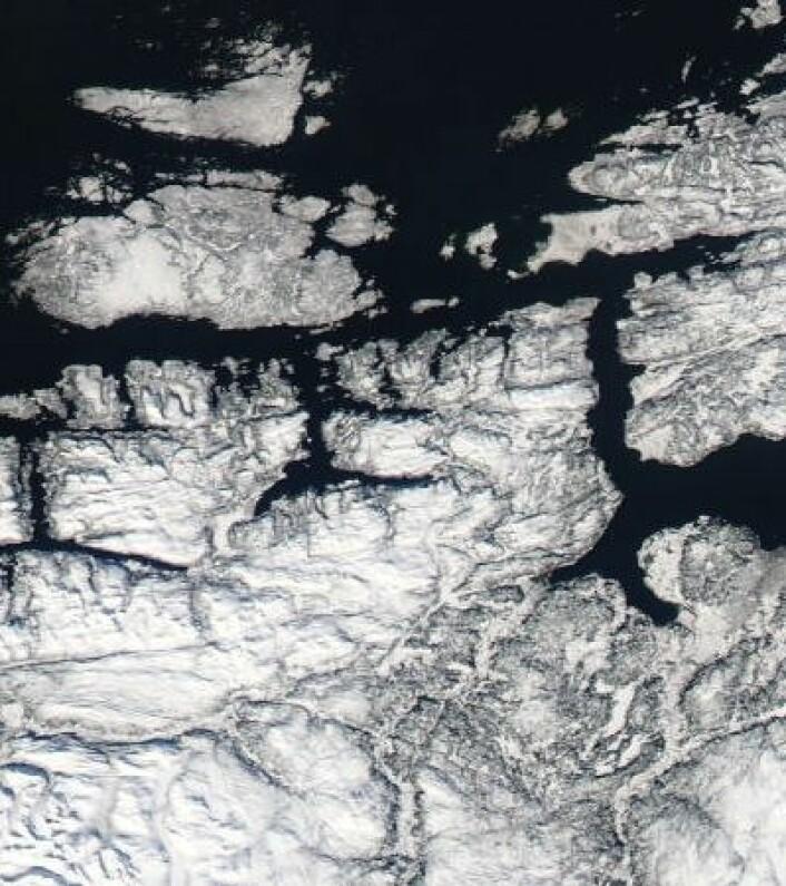 Ingen tidlig vår i Trøndelag i år. Her sett fra NASAs satellitt Aqua 22. mars. (Foto: (NASA Aqua MODIS))