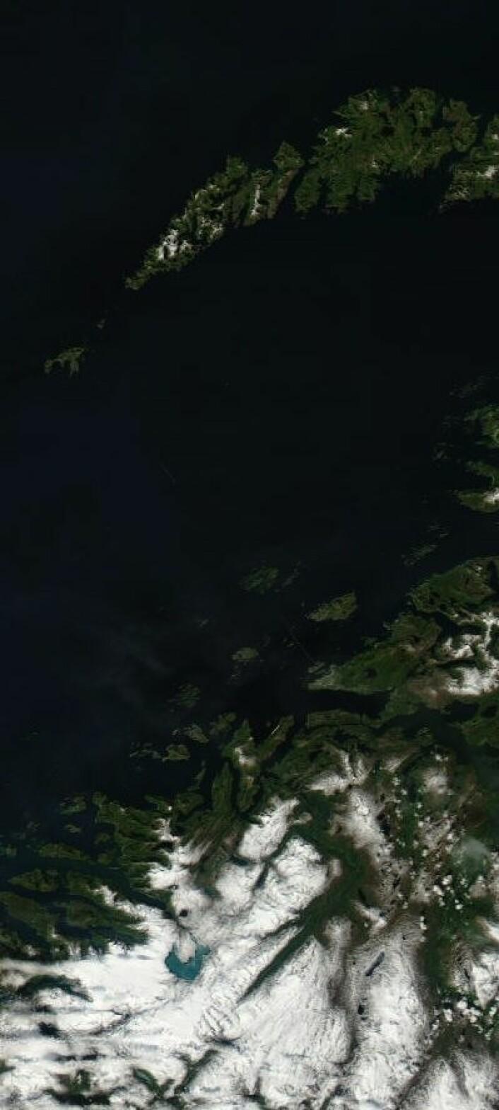 Nordlandskysten og Lofoten sett fra satellitt 4. juli. (Foto: (NASA Terra MODIS))