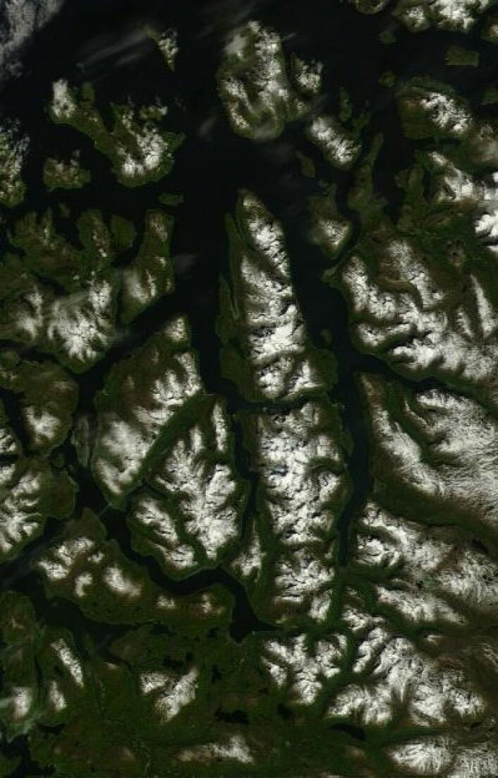 Lyngen og deler av Indre Troms sett fra NASAs satellitt Terra 10. juli. (Foto: (NASA Terra MODIS))