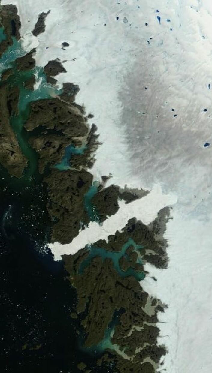 Jakobshavn og isen deromkring sett fra NASAs satellitt Terra, etter noen varme dager på Grønlands vestkyst. (Foto: (NASA Terra MODIS))