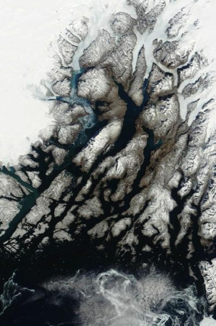 Nesten vårstemning i traktene rundt den gamle norrøne Austerbygda på Grønland, men fortsatt noe drivis på havet 9. april i år. Hvordan var det for tusen år siden, tro? (Foto: (NASA Terra MODIS))