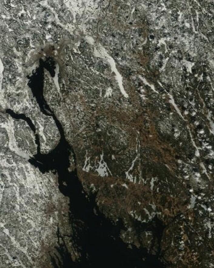 Satellittbilde fra NASAs Terra 8. april. Glomma er isfri, og man begynner å skimte noe åpent vann i Nordre Øyeren. (Foto: (NASA Terra MODIS))
