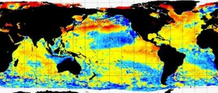 Temperatur i havoverflaten målt fra satellitt 2. august. (Foto: (NOAA))
