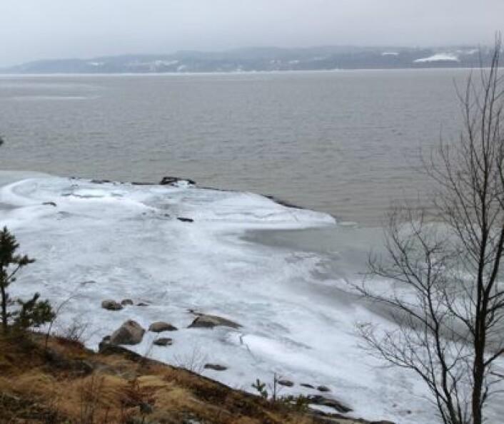 Øyeren, søndag formiddag 14. april: Isen er borte utenfor hytta. (Foto: T. Wahl)