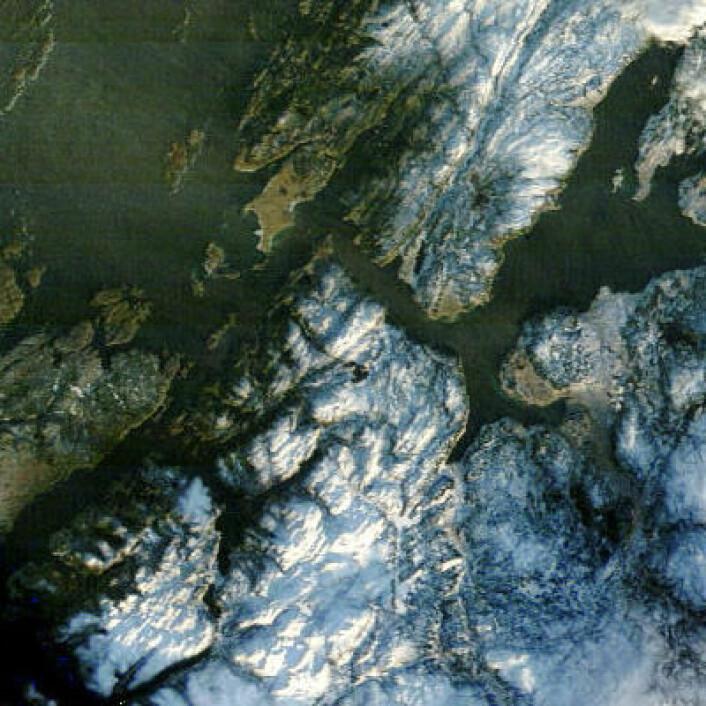 Ikke skiføre overalt, men noe snø var det i Sør-Trøndelag fredag 17. januar. (Foto: (NASA Terra MODIS))
