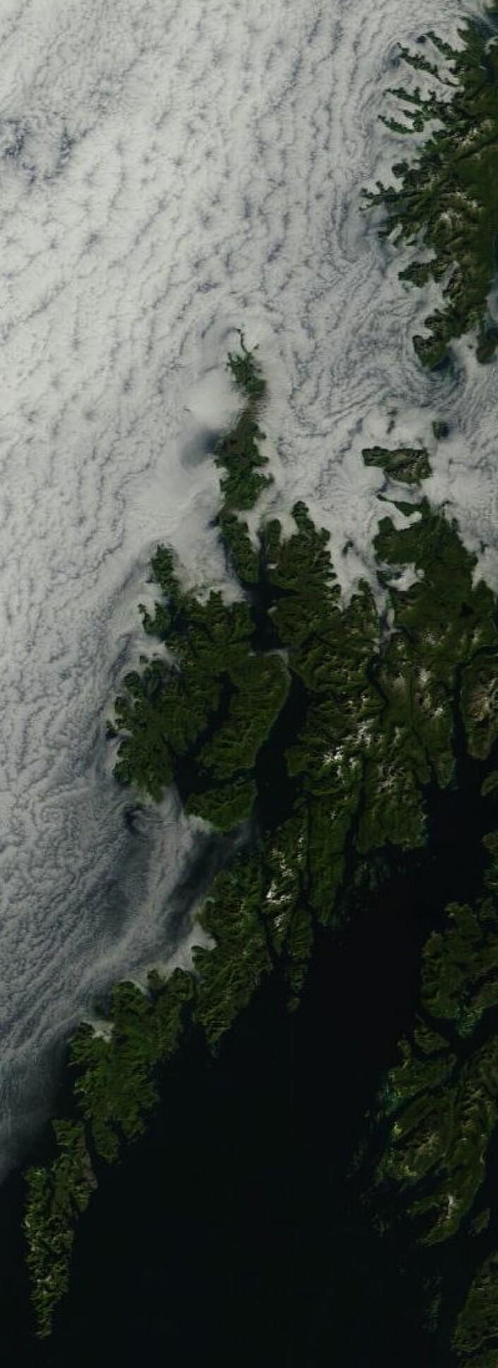 Lofoten og Vesterålen sett fra NASAs satellitt Terra 14. august. Vi satser på at skyene fjerner seg til rom-jubileet på Andøya. (Foto: (NASA Terra MODIS))