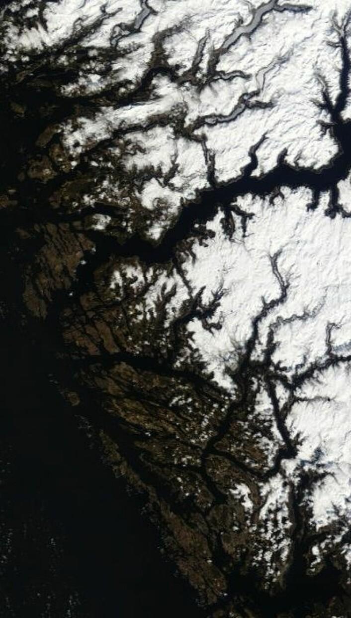 Sen vår på Vestlandet, sett fra Terra-satellitten lørdag 27. april. (Foto: (NASA Terra MODIS))