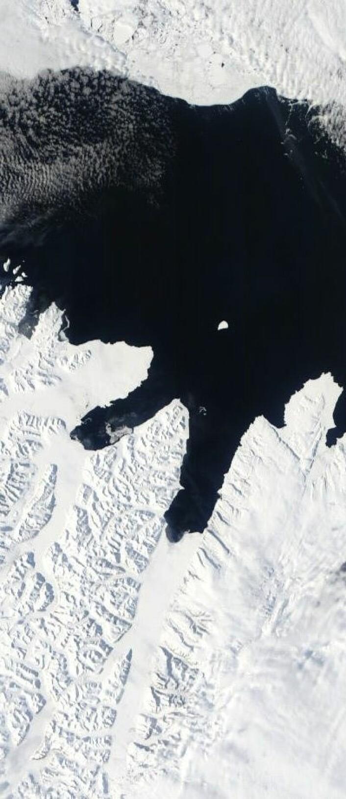 Mye åpent vann utenfor Wijdefjorden på nordsiden av Svalbard 7. mai. (Foto: (NASA Terra MODIS))