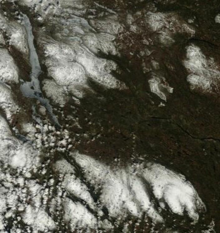 Fine farger i grensetraktene mot Sverige 10. mai. Like før isen forsvinner på Femunden nå. (Foto: (NASA MODIS))