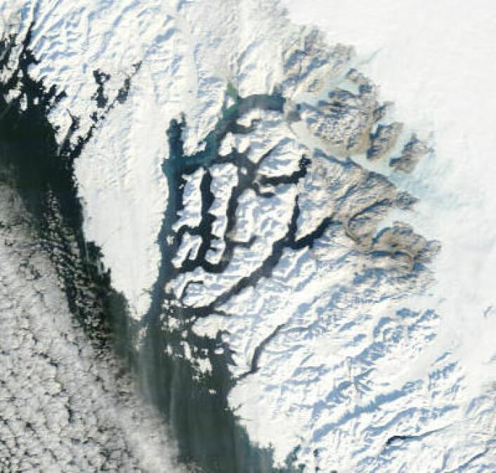 Bar bakke og blå is vest på Grønland, sett fra NASA-satellitt 12. februar. Ikke mye snø som har falt akkurat der hittil i vinter (Foto: (NASA MODIS, redusert oppløsning))