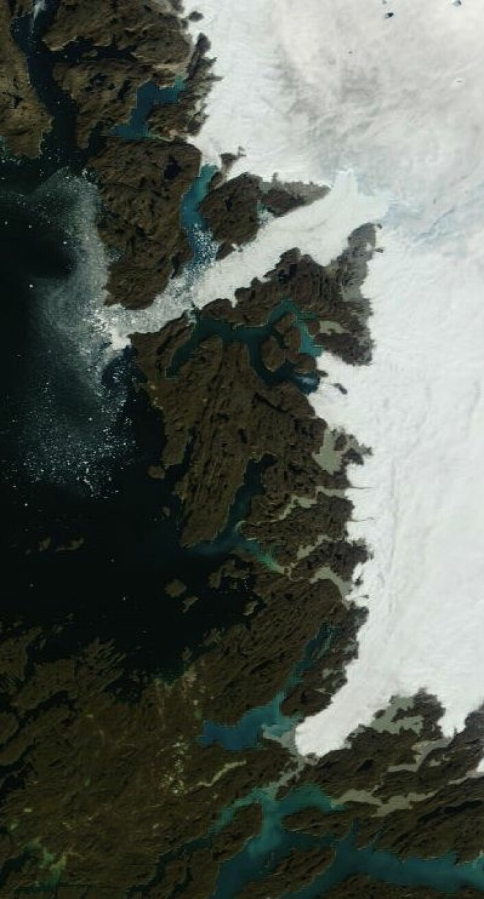 En liten is-kollaps ute på Jakobshavn-breen i dag? Her sett i full oppløsning fra Terra 29. august. (Foto: (NASA Terra MODIS))