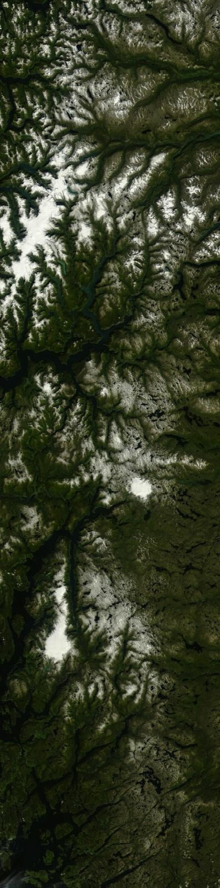 Her er den gjenværende isen og snøen i fjellet etter denne sommeren. Sett fra Terra 27. august. (Foto: (NASA Terra MODIS))