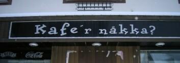 Kafé i i Harstad. (Foto: Øystein A. Vangsnes)