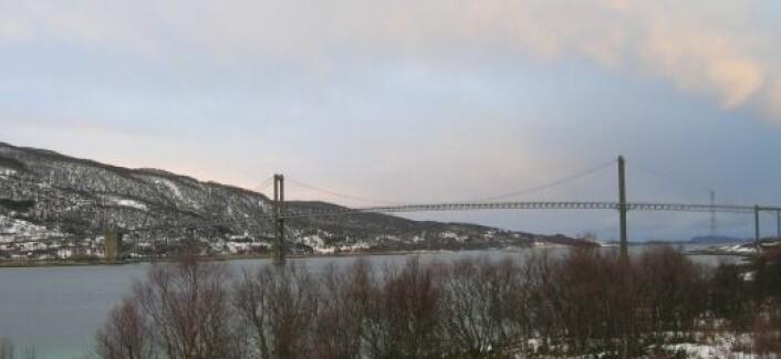 Tjeldsund bru. (Foto: Øystein A. Vangsnes)