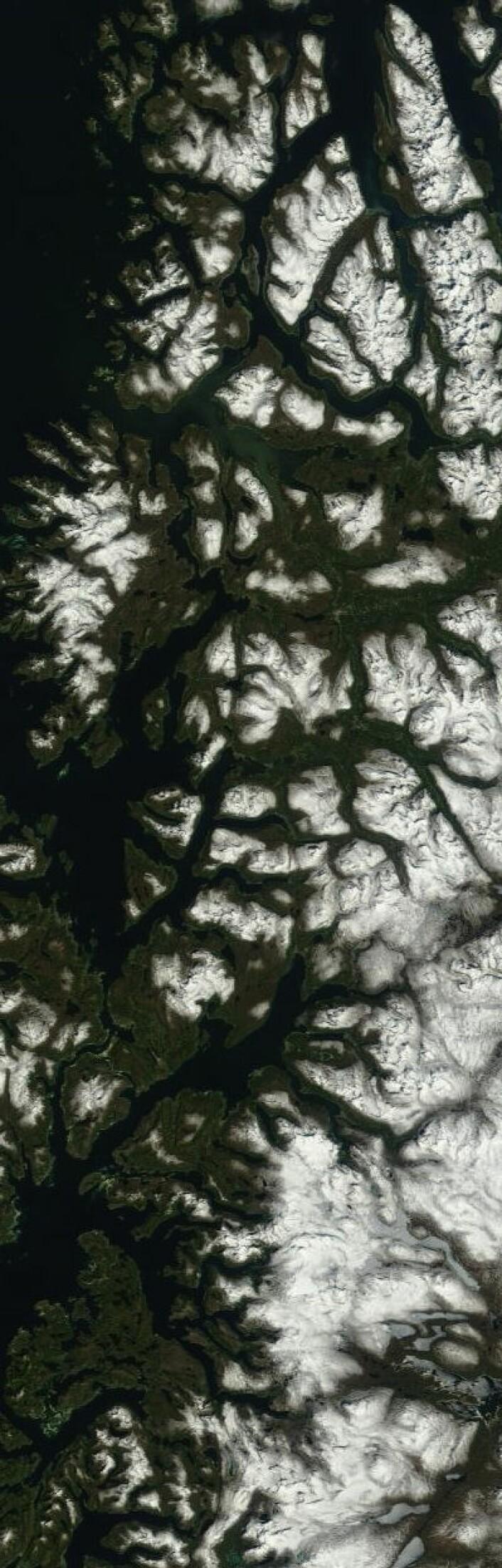 Troms og deler av Nordland sett fra NASAs satellitt Terra fredag 31. mai. (Foto: (NASA Terra MODIS))
