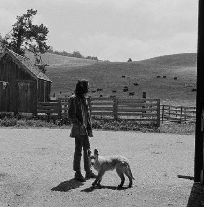 Neil Young flyttet fra kulda i Canada og kjøpte ranch i California. Her fotografert i 1971. (Foto: Henry Diltz)
