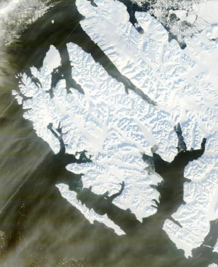 Svalbard sett fra NASAs satellitt Terra fredag 14. mars. Usedvanlig lite is i Wijdefjorden. (Foto: (NASA Terra MODIS))