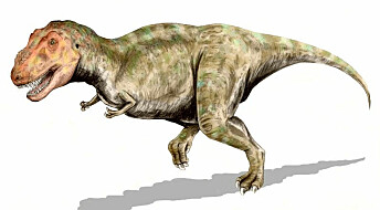 Dinosaurene var ikke bare på besøk – de overvintret i Arktis