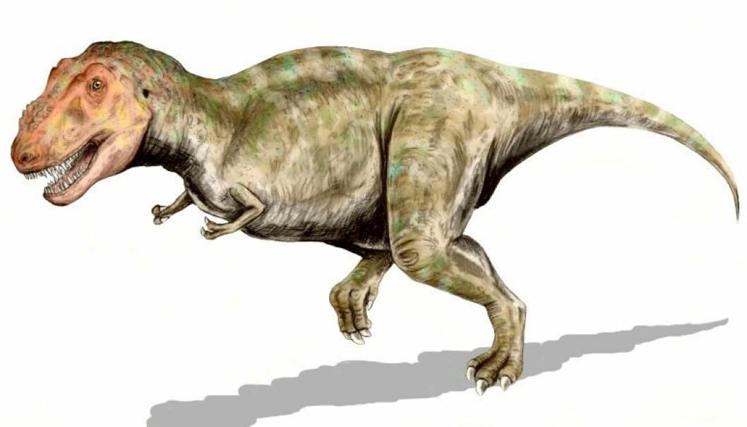 Tyrannosaurus rex er en av artene som er påvist i Alaska.