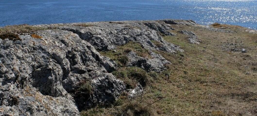 Denne lille holmen i Langesundsfjorden er proppfull av sjeldne mineraler