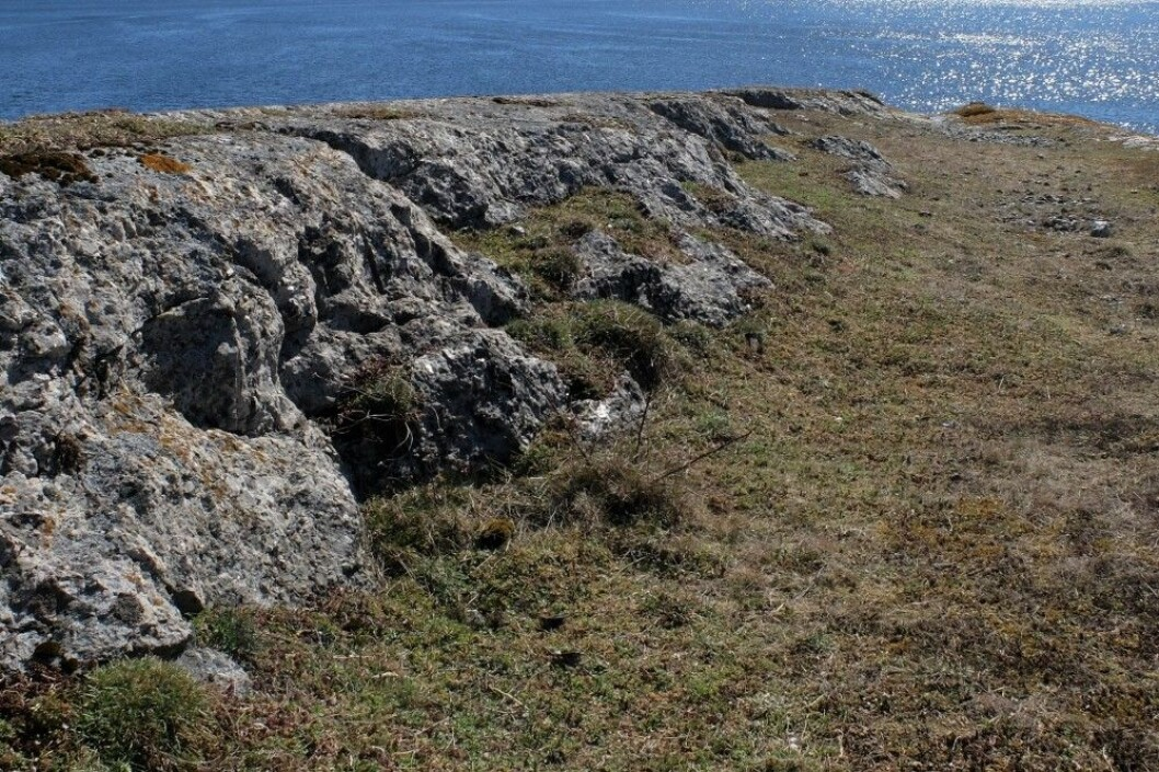 Spor av isbreers herjinger i de lange rennene ned mot sjøen. Spor etter hakkende mineraljegere i berget. (Foto: Eivind Torgersen)