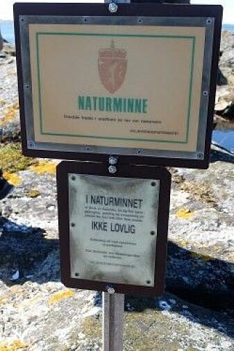 Det er ikke lov å ta med seg stein fra Låven. Verken på norsk, engelsk eller tysk. (Foto: Eivind Torgersen)