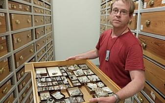 I magasinet til Geologisk museum i Oslo har førsteamanuensis Henrik Friis tilgang til titusenvis av prøver, både av bergarter og av mineraler. Flere av skuffene har prøver fra Låven. (Foto: Eivind Torgersen)