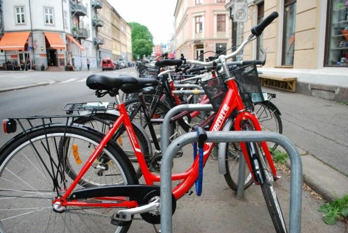 Forskere og syklister frykter at folk lar sykkelen stå dersom vi får et påbud om bruk av hjelm i Norge. (Foto: Marte Dæhlen / forskning.no)