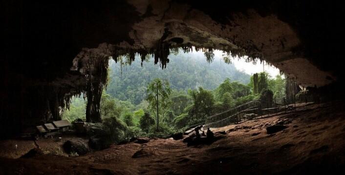 Hovedinngangen til hulesystemet i Malaysia. (Foto: Starlightchild/CC BY-SA 3.0)
