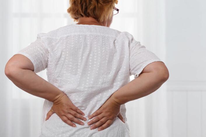 Muskel-, ledd- og skjelettplager henger også sammen med kvinnenes høye sykefravær. Forskerne vet ikke om deltakerne i spørreundersøkelsen har oppgitt vanlige plager som vondt i ryggen eller om de bare har krysset av for sykdommer, for eksempel leddgikt. Siden nesten hver tredje kvinne har svart at hun plages i muskler, skjelett eller ledd, tipper forskerne at mange har smerter i rygg, nakke og skuldre.(Foto: Shutterstock/NTB scanpix)
