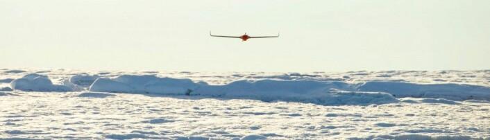 Relativt beskjedne, lite kostbare droner ble brukt til den omfattende undersøkelsen. (Foto: A. Hubbard)