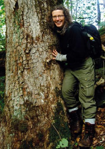 Anne Sverdrup-Thygeson har nylig gitt ut boka «Insektenes planet» med undertittelen «om de rare, nyttige og fascinerende småkrypene vi ikke kan leve uten». (Foto: Privat)