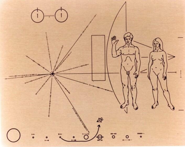 Pionerplata ble skutt opp i verdensrommet i 1972. Året etter sendte den amerikanske romfartsetaten NASA ut en til. Tanken er at tegningene og kartet på aluminiumsplakettene skal forklare eventuelt utenomjordisk liv om menneskeheten og fortelle hvor vi bor. Men designerne har fått kritikk for blant annet at det bare er mannen som hilser og at begge kjønn ser hvite ut. (Illustrasjon: Linda Salzman Sagan/Carl Sagan/Frank Drake/NASA)
