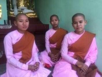 Unge buddhistiske nonner i det buddhistiske tempelet Shwedagon Padoga. (Foto: Sidsel Holmberg)