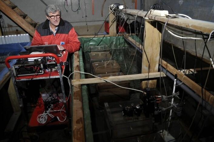 Morten T. Schaanning i et forsøk på NIVAs forskningsstasjon på Solbergstrand. (Foto: NIVA)