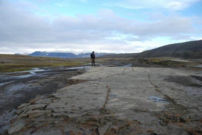 Da den bredemte sjøen ble tappet, skjedde dette trolig raskt og det var kraftig erosjon helt ned til fjellet. Strandlinjer fra sjøen ble dannet blant annet i åsen til høyre på bildet. (Foto: Astrid Lyså / NGU)