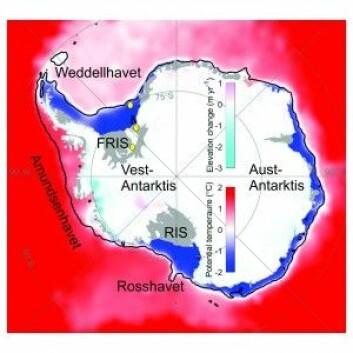 Dette er Antarktis og Sørishavet. Fargeskalaen over havet viser temperaturen på havvatnet. Den mørke blå fargen langs kysten viser områder der vatnet er kaldt. I Amundsenhavet komer det varme vatnet inn til kysten og smelter isen slik at isbremmane blir tynnare. Fargeskalaen over isen viser områder der isen blir tynnare eller tjukkare. Dei grå områda er isbremmane, Filchner-Ronne (FRIS) og Ross (RIS), og den svarte streken utafor kysten indikerer kontinentalkanta. Dei gule sirklane merker den geografiske plasseringa av dei norske målestasjonane. (Illustrasjon: Shepherd, A., et al. 2016 og Orsi, A.H., and T. Whitworth III. 2005)