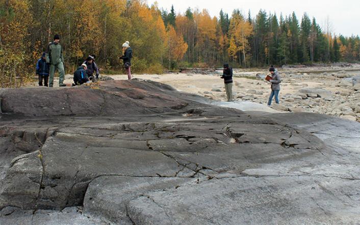 Forskerne på feltarbeid ved Onega-sjøen i Russland.Geologisk sett er et basseng en fordypning i jordskorpa hvor det har hopet seg opp tykke avleiringer som er blitt til bergarter. (Foto: Kalle Kirsimäe)