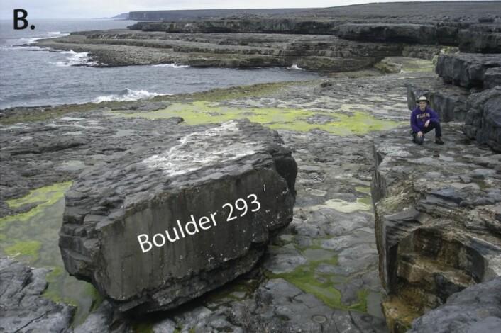 Denne kampesteinen veier om lag 620 tonn og flyttet seg 3,3 meter under vinterstormene 2013-2014. Steinen ligger nå over høyvannsnivået. Det hvitmalte området på toppen markerer hvor en blokk på om lag 60 tonn ble kappet av steinen under en storm nylig. (Alle fotos er fra forskningsartikkelen.)
