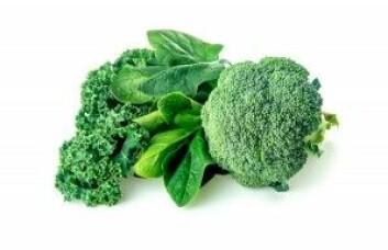Kokt brokkoli, kokt grønnkål og kokt spinat er blant grønnsakene som inneholder mye K-vitamin. (Foto: Enlightened Media / Shutterstock / NTB scanpix)
