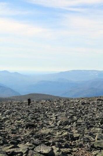 Forskerne har tatt steinprøver fra fjellene rundt Sognefjorden og analysert dem for hvor lenge de har vært eksponert for stråling fra verdensrommet. (Foto: Foto: Christian Brædstrup)