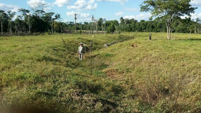 En grøft som ble gravd av urfolket her, en gang før 1500-tallet. (Foto: José Iriarte)