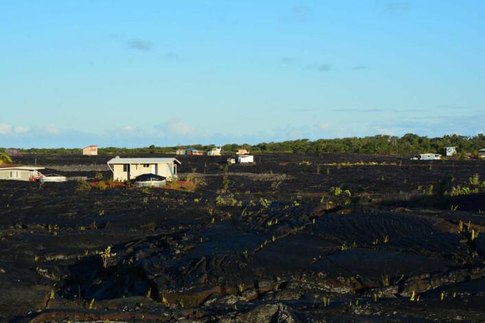 Nye spirer og hus stikk opp frå den størkna lavaen. (Foto: Eilin Holtan Torgersen)