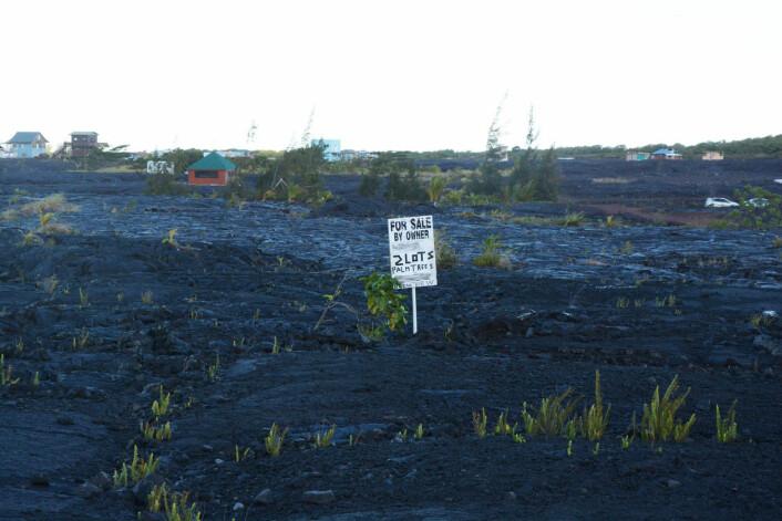 TIL SALS: Denne eigedomen er ute på markedet etter at laven sletta ut landskapet. (Foto: Eilin Holtan Torgersen)