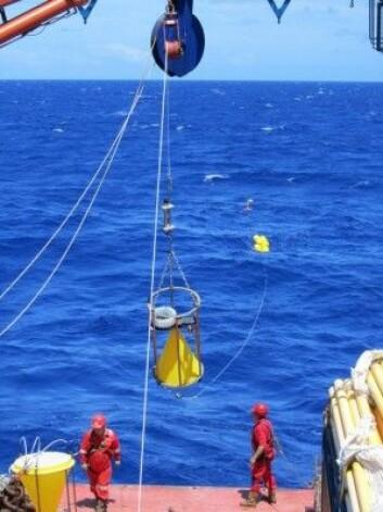 Forskerne tok vannprøver og sammenlignet de med målinger gjort av miljøsatellitter. (Foto: PML)