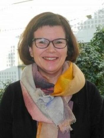 Professor Gunn Pettersen har vært veileder for prosjektet. (Foto: Elisabeth Øvreberg)