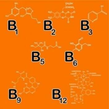 Forskerne trodde en gang at det var tolv forskjellige typer B-vitaminer. I dag er tallet nede på åtte. (Illustrasjon: artskvortsova / Shutterstock / NTB scanpix)